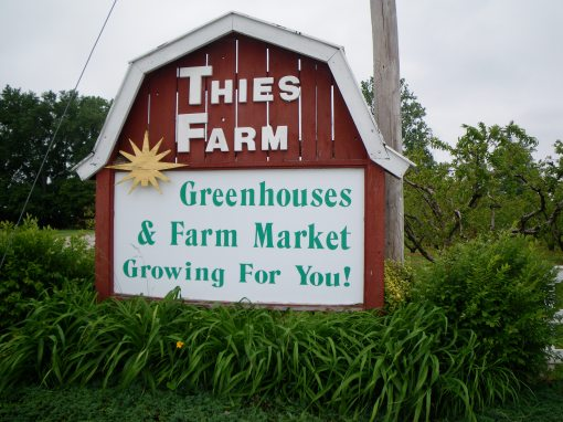 Thies Farm