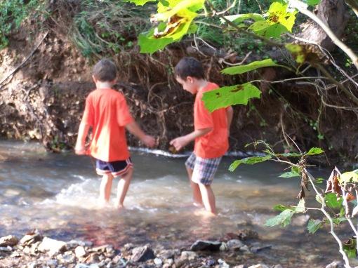 2016-creek